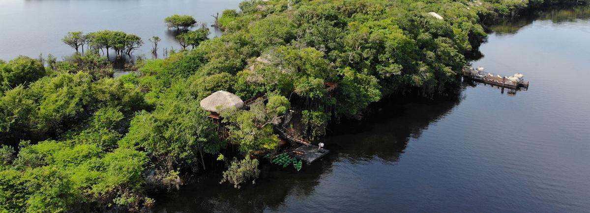 Juma Amazon Lodge: saiba tudo sobre a hospedagem neste hotel de selva na Amazônia
